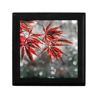 Japanese Red Maple Leaves Keepsake Box