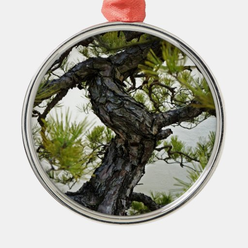 Japanese Red Pine Bonsai Tree Christmas Tree Ornament