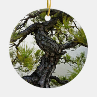 Japanese Red Pine Bonsai Tree Ornament