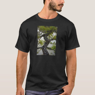 Japanese Red Pine Bonsai Tree T-Shirt