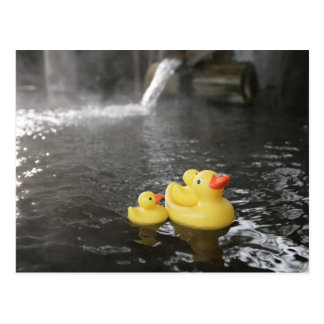 Japanese Rubber Duckies Postcard