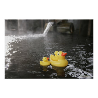 Japanese Rubber Duckies Poster