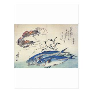 Japanese Sea Life Painting circa 1800's Postcard