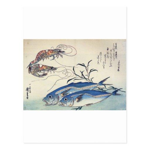 Japanese Sea Life Painting circa 1800's Postcards