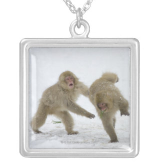 Japanese Snow Monkey cubs playing on snow Silver Plated Necklace