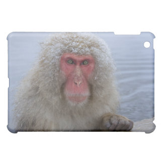Japanese Snow Monkey in hotspring iPad Mini Cases