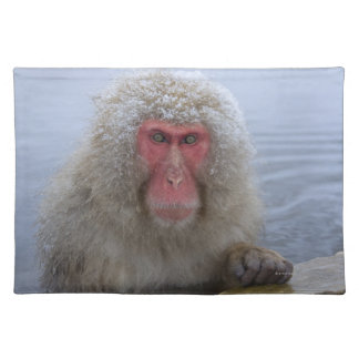 Japanese Snow Monkey in hotspring Placemat