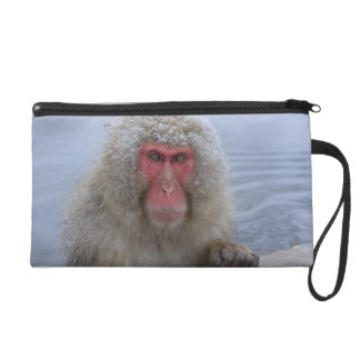 Japanese Snow Monkey in hotspring Wristlet