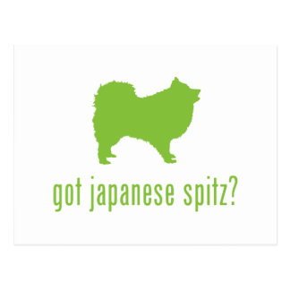 Japanese Spitz Post Card