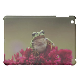 Japanese tree frog (Hyla japonica) on flowers, iPad Mini Cases
