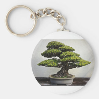 Japanese White Pine Bonsai Basic Round Button Key Ring