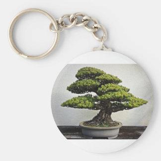 Japanese White Pine Bonsai Basic Round Button Key Ring
