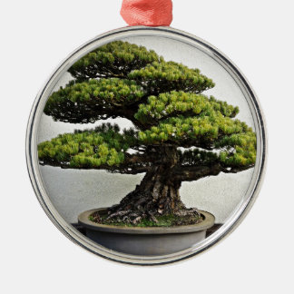 Japanese White Pine Bonsai Silver-Colored Round Decoration