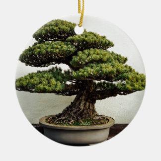 Japanese White Pine Bonsai Tree Round Ceramic Decoration