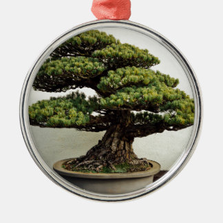 Japanese White Pine Bonsai Tree Silver-Colored Round Decoration