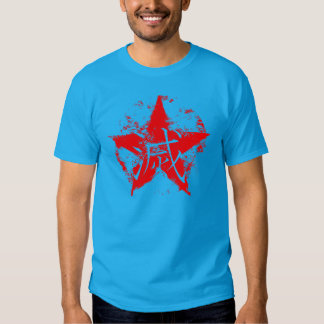 """Japanese writing for """"destruction"""" inside star shirt"""