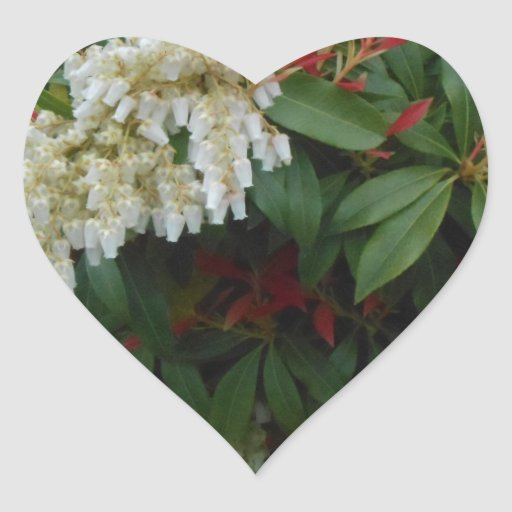 Japonica Heart Stickers