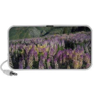 JARBIDGE WILDERNESS, NEVADA. USA. Spur lupine iPhone Speakers