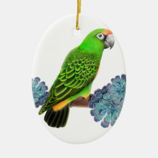 Jardine's Parrot Holiday Ornament