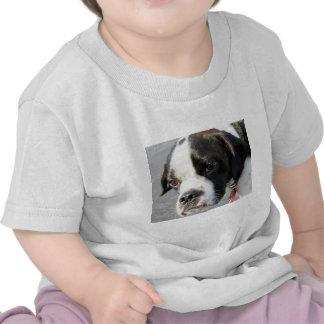 Jarno - Boston Terrier Hybrid Photo-1 Tshirt