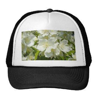 Jasmine Bush Trucker Hats