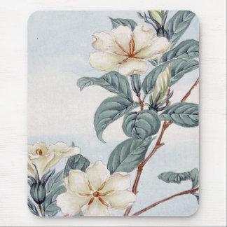 Jasmine Flowers (Vintage Japanese Art) Mouse Pad