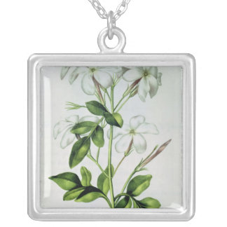Jasmine, from 'La Guirlande de Julie' Silver Plated Necklace