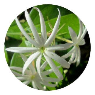 Jasmine White Green Flower Announcement
