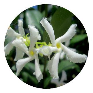 Jasmine White Tubes Flower Invite