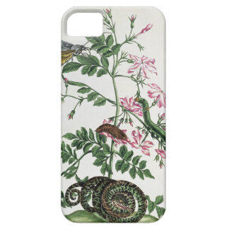 Jasmine: with snake, moth, caterpiller and chrysal barely there iPhone 5 case