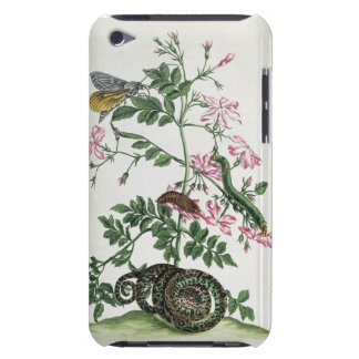 Jasmine: with snake, moth, caterpiller and chrysal iPod touch cover