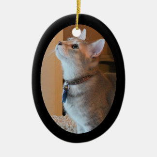 Jasper Kitten Photo Framed 2-Sided Oval Ornament