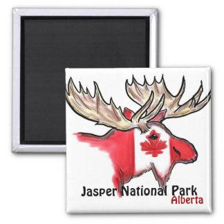 Jasper National Park Alberta Canada elk magnet
