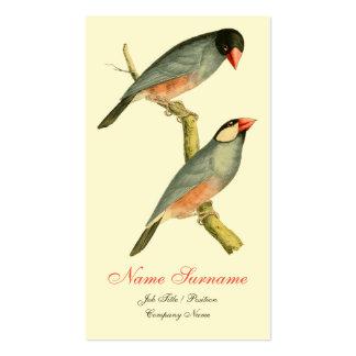 Java Sparrow Business Card