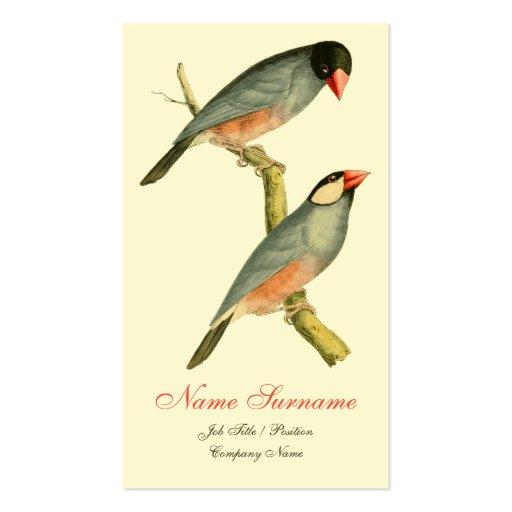 Java Sparrow, Business Card