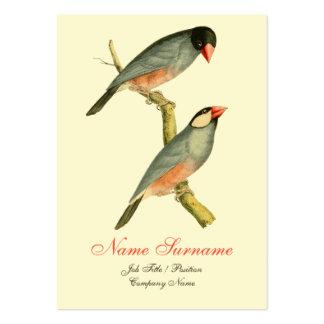 Java Sparrow Business Card Template