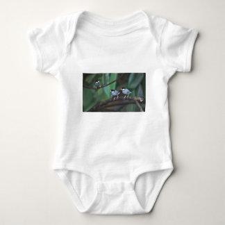 Java Sparrows Baby Bodysuit