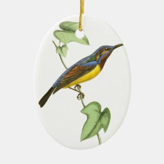 Javanese Creeper Bird Illustration by William Swai Ceramic Oval Decoration
