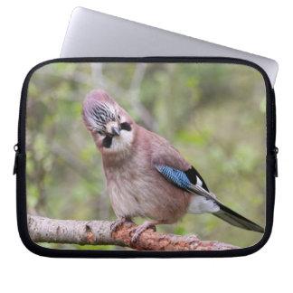 Jay bird wildlife photograph laptop sleeve