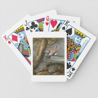 Jay, Green Woodpecker, Pigeons and Redstart, c.165 Bicycle Playing Cards