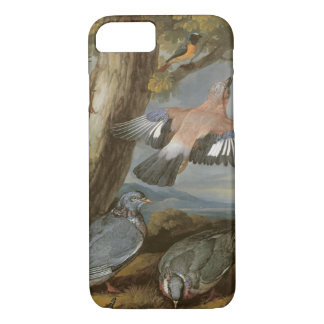 Jay, Green Woodpecker, Pigeons and Redstart, c.165 iPhone 8/7 Case