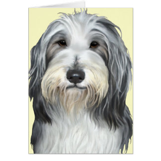 Jazz, the Bearded Collie Card