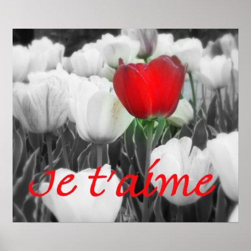Je t'aime Red Tulip Print
