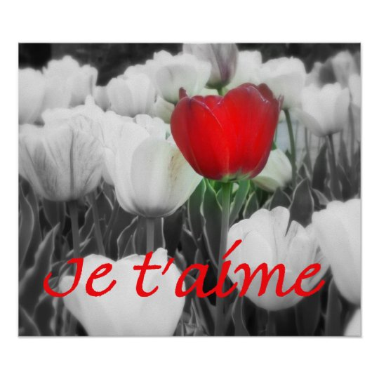 Je t'aime Red Tulip Print