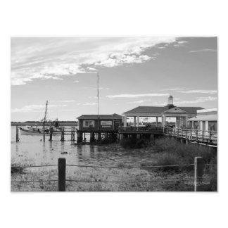 Jekyll Island - Georgia Photo Print