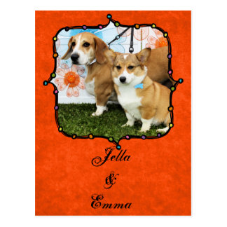 Jella = Corgi and Emma Beagle/Bass/Bulldog Postcard