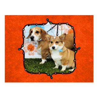 Jella = Corgi and Emma = Beagle Basset and Bulldog Postcard