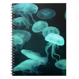 jelly fish glowing notebooks