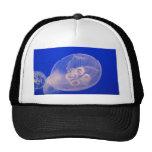 jelly fish hats