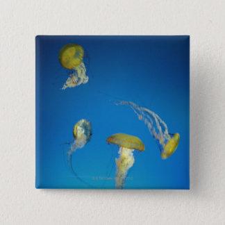 Jellyfish 15 Cm Square Badge